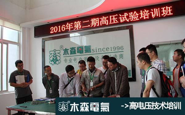 四川35kV线路工频参数测试仪报价生产厂家木森电气